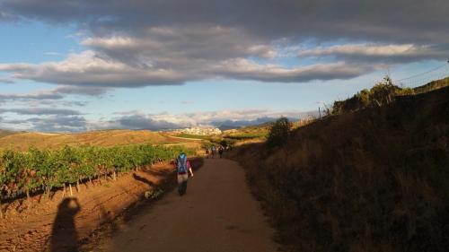 Auf dem Camino Francés